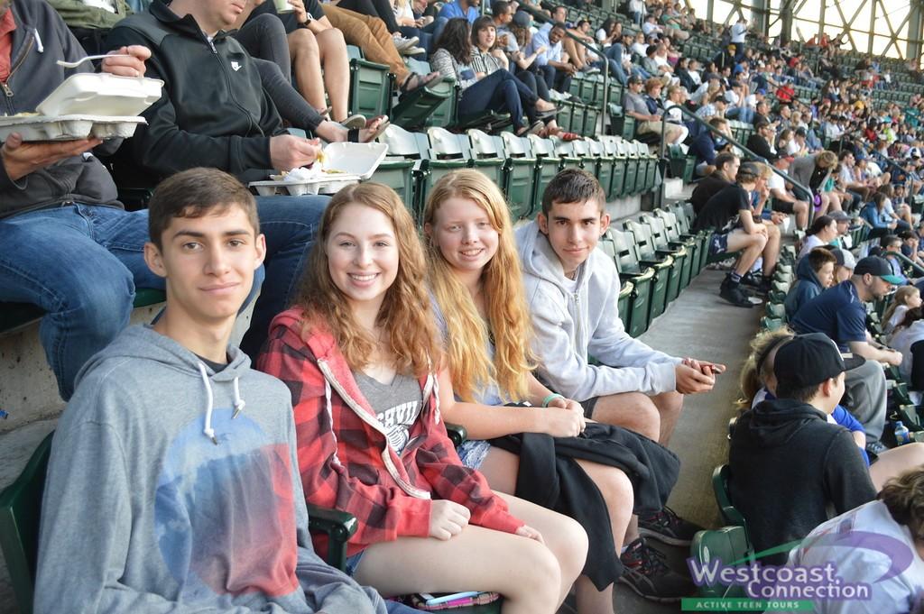 NWO Baseball Game