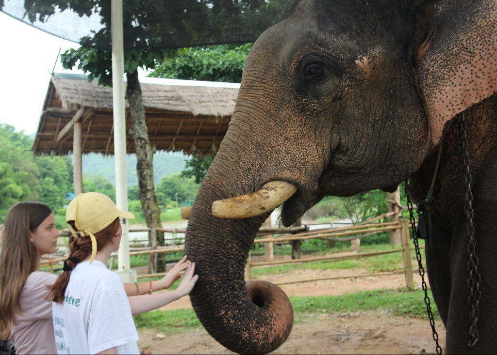 thailand community service blog 2 photo 1