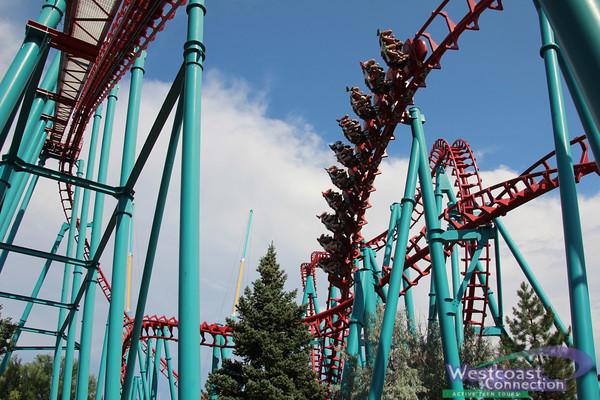 California Extravaganza- Roller Coaster