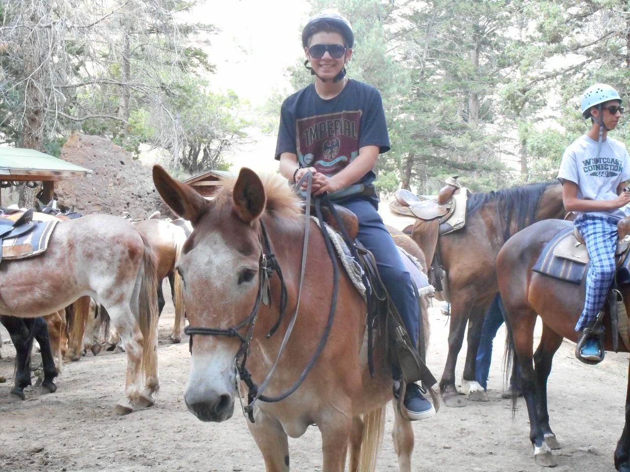 Horseback Riding - US Explorer