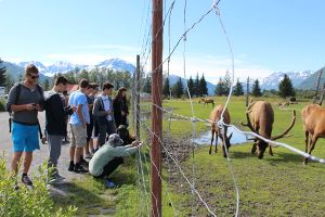 Community Service Alaska at a Farm