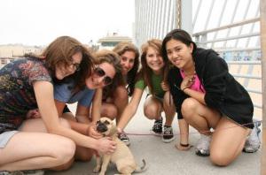 Making New Friends on the Boardwalk