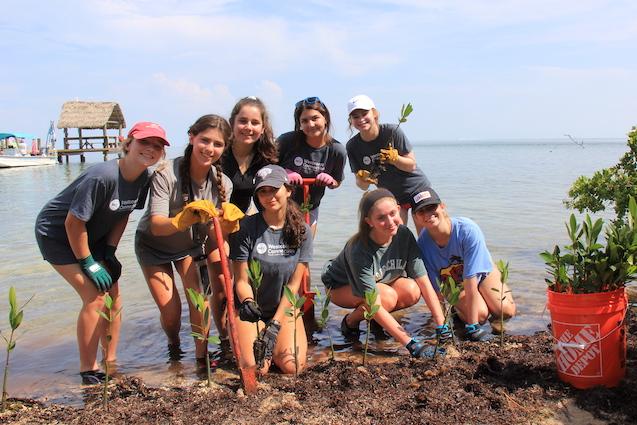 Florida Keys: Marine & Wildlife Conservation